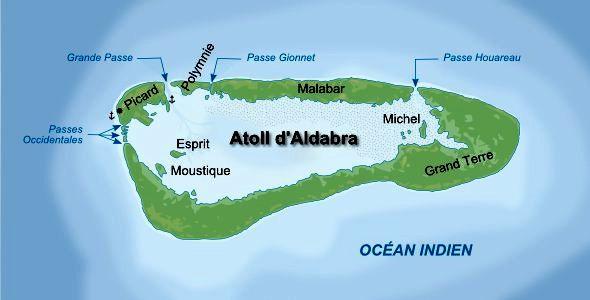 group_aldabra